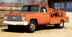 Rusty Chevy work truck (mark1973r) Tags: