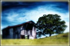 Barn (Astral Will) Tags: barn hdr kincheloe blur tree fence hss sliderssunday wv westvirginia country