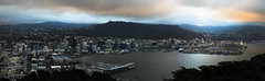 Wellington From Mt Vic (Wozza_NZ) Tags: mtvic mtvictoria mountvictoria lookout view wellington newzealand harbour cbd city capital nz pana pano panarama panorama panoramic panaramic