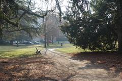 Parc des Raisses @ Annecy-le-Vieux (*_*) Tags: europe france hautesavoie 74 annecy annecylevieux january winter hiver 2019 morning parcdesraisses park sunny savoie fog