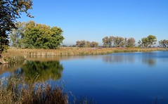 Without (Patricia Henschen) Tags: rockymountainarsenal commercecity colorado nationalwildliferefuge denver park prairie wetland refuge reflection autumn