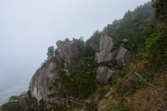 DSC_3860 (sch0705) Tags: hk hiking stream kowloonpeak kowloonpeakhinterland kowloonpeakhinterlandstream
