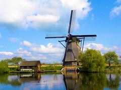 DSCN0917 (alainazer2) Tags: kinderdijk paysbas hollande nederland holland moulin windmill eau acqua water ciel cielo sky champs fields albero arbre tree mulino