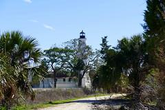 St. Mark's Lighthouse (ivlys) Tags: usa florida stmarks nationalwildliferefuge palme palmtree baum tree leuchtturm lighthouse landschaft landscape natur nature ivlys
