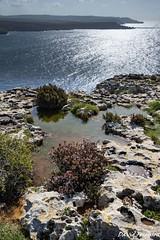 Rock Pool #2 - Coastline arround Mellieha (Daveoffshore) Tags: malta mellieha coast coastline water scenic sky sea geology limestone rock pool