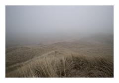 Husby Klit, Denmark, 2019 (csinnbeck) Tags: eos m10 canon eosm 22mm 35mm dunes fog digital mist winter denmark dk north sea eosm10 landscape foggy jutland west