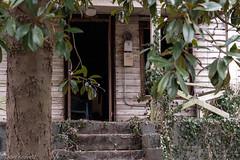 Front porch - Belmont (davekrovetz) Tags: garden magnolia porches porch pentax k70 pentaxk70 pentaxlimited belmont charlottesville virginia abandoned architecture houses
