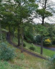 Kay Park, Kilmarnock, Ayrshire, Scotland. (Phineas Redux) Tags: kayparkkilmarnockayrshirescotland scottishpublicparks kilmarnockayrshirescotland ayrshirescotland scottishlandscapes scottishscenery scotland park