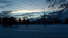 Evening Sky (joeldinda) Tags: canon powershotg9xii g9x 2019 michigan mulliken village sky cloud tree 4412 january