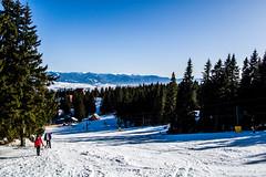 0155_DSC_2591 (marcellszmandray) Tags: kirándulás tél lucskaifátra szlovákia hó fátra