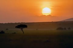 Mara Sunrise (helenehoffman) Tags: africa kenya landscape maasaimaranationalreserve orange sunrise