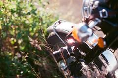 燒起來了 (Long Tai) Tags: minolta x700 mc rokkor 58mm 12 fujicolor superia xtra 400 expired 112017