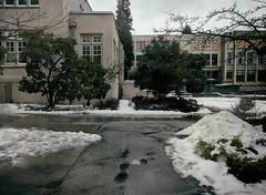 campus in snow