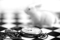 follow the white rabbit (photos4dreams) Tags: timepiece pocketwatch watch clock uhr bw sw black white macromondays macro macrolens makro photos4dreams p4d photos4dreamz hmm