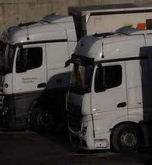 Trucks Mercedes Benz 1000 mm (eagle1effi) Tags: canonpowershotsx70hs canon powershot sx70hs powershotsx70hs eagle1effi bridgecamera 2019