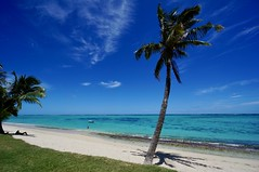 Have a good weekend :-) (fxdx) Tags: beach sun sea indian ocean mauritius palm trees sky clouds nex6 sony 1018