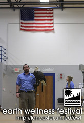 Earth Wellness Festival 2019 - The Raptors - Bald Eagle _ 10 (UNL Extension in Lancaster County) Tags: raptor raptors world bird sanctuary bald eagle