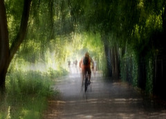The cyclist (Zara.B) Tags: intentionalcameramovement iphone icm impression riverbank abstract painterly cyclist path trees light shadows slowshutterapp blur mobilephonecamera motionblur