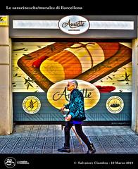 1084_D8C_9670_bis_Barcelona_Murales (Vater_fotografo) Tags: geo:lat=4137726620 geo:lon=215853140 geotagged barcelona barcellona vaterfotografo ciambra clubitnikon murales murale espana españa es spagna nikonclubit nikon ngc arte artistadistrada colori