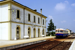 FAM-ST ADn 808 Cavarzere 28/05/1995. Foto Roberto Trionfini (stefano.trionfini) Tags: train treni bahn zug diesel famst adn808 veneto italia italy