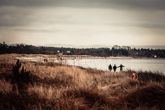 Tofta Beach (J. Pelz) Tags: people beautifulplaces mood beach landscape sweden gotland nature