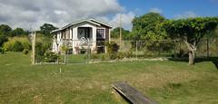 Bridgetown (Luigi Rosa) Tags: barbados caribbean bridgetown verde green prato grass casa house