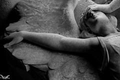 Genova, Cimitero Monumentale di Staglieno (Sven Kapunkt) Tags: gräber grab graveyard grabmal gothic grabstätte genova genua friedhof friedhöfe cemetery cemeteries cimetière campo cimitero certosa italia italien italy engel angel ligurien liguria