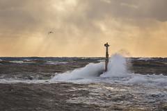 3223 (Keiichi T) Tags: sky canon sea eos 波 water light 日本 空 水 6d 海 splash lighthouse japan 光 bird 灯台