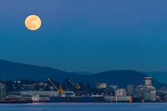 Harbour Moon  🌖 Vancouver, BC (Michael Thornquist) Tags: moon supermoon superfullwormmoon fullwormmoon fullmoon vancouverharbour burrardinlet trophyatthepier theshipyards lowerlonsdale vancouverdrydock seaspan barge cranes moodyville belcarra anmore eaglemountain celltower lowlevelroad neptunebulkterminals cargrill vancouverport portofvancouver vancouverphotos vancouver britishcolumbia dailyhivevan vancitybuzz vancouverisawesome veryvancouver 604now photos604 explorecanada ilovebc vancouverbc vancouvercanada vancity pacificnorthwest pnw metrovancouver gvrd canada 500px