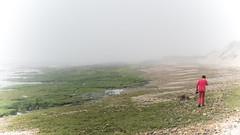 Esposende. Portugal (miguelno) Tags: esposende braga portugal playa beach piedras niebla fog panasonic lumix fz1000