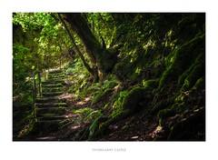 Stairway near Invergarry Castle