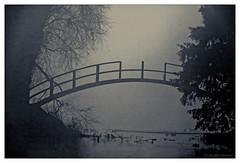 Damaged bridge (cstevens2) Tags: antwerp antwerpen antwerpenprov anvers belgique belgium belgië bridge brug deurne europe flanders flandre park rivierenhof vlaanderen bomen fishingpond fog mist parc trees visvijver blackandwhite