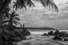 Holding Hand (Henrik Ladegaard-Pedersen) Tags: longexposure galle srilanka blackandwhite monochrome palmtrees beachholdinghands couple pair portrait