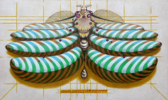 Fibonacci moth (cortese.federico) Tags: butterfly moth insect insects animals pin pins catalogue cataloging natural classification collection decoration decor decorative detail fibonacci math surreal painting fantasy
