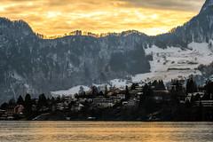 Golden Hour (Bephep2010) Tags: 2019 2682118 7markiii af70200mm128apog alpen alpha berg bergrücken goldenestunde horw ilce7m3 laea3 lakelucerne lucerne luzern minolta schnee schweiz see sony switzerland vierwaldstättersee winter alps bewölkt cloudy goldenhour lake mountain mountainridge snow ⍺7iii meggen kantonluzern ch