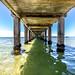 St Leonards Pier Underwater-40
