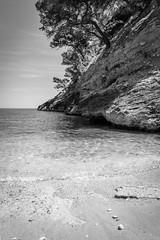 Gargano, Puglia, Italia (gotan-da) Tags: gargano puglia italia blackwhite schwarzweiss noiretblanc blackandwhite bw monochrome mare