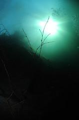 NorthWales-VivianQuarry-201802-19 (Tony J Gilbert) Tags: snowdonia llanberis northwales viviandivecentre vivianquarry mountsnowdon diving aquatic freshwater quarry floodedquarry nikon d300