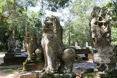 Angkor_Ta Prohm_2014_06