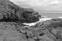Cliffs,Collieston_Mar 19_526 (Alan Longmuir.) Tags: monochrome grampian aberdeenshire collieston cliffs