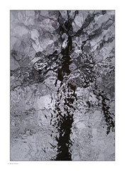 Liquid Transformation 1. (Michael Fleischer) Tags: water foreststream overcast formations high iso pattern faces crop fluid abstract sigma 50mm f14 art