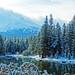 It Snowed Last Night, Spring in Yosemite High Country, CA 5-15