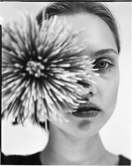 **** (ally.fane) Tags: analogue film filmphotography largeformat 4x5film fujifilm xray xrayfilm blackandwhite girl girlsonfilm ishootfilm portrait portraitphotography toyo