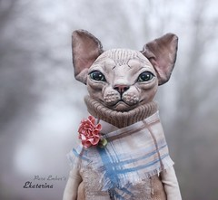 Ekaterina in the fog ☁️ (pure_embers) Tags: pure embers laura uk pureembers photography cat kitty sculpture anthropomorphic portrait cute sphynx textile sphinx ekaterina foggy flower doll art