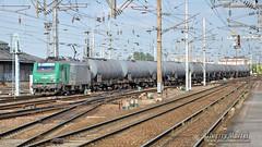 BB 27050, Amiens - 30/07/2010 (Thierry Martel) Tags: bb27000 locomotiveélectrique sncf amiens