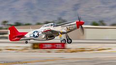 "North American P-51D Mustang ""Bunny"" (david g schultz) Tags: 01052019 airplane palmspringsairmuseum aircraft nikkor nikon outdoor northamericanp51dmustang bunny tomnightingale panning motionblur vehicle psam nikonafs283003556gedvr"