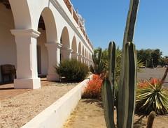 IMG_0561 (GoodLifeErik) Tags: missionsanluisreydefrancia missionsanluisrey mission missions californiamission californiamissions archway archways succulents cactus endlessarches