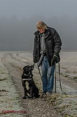 Traininigsstunde (Steffi.K.) Tags: labradorretriever hund dog fotografieren fotograf training snow cold winter kalt schwarz schwarzwald