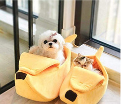 Cute Banana Cat Cuddle Bed House (mywowstuff) Tags: gifts gadgets cool family friends funny shopping men women kids home