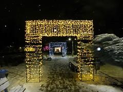 Christmas in Bazilescu Park, Bucharest (cod_gabriel) Tags: winter park parc bazilescu parculbazilescu bazilescupark bucuresti bucureşti bucharest bucarest bucareste bukarest boekarest romania roumanie românia iarna iarnă night noapte magiacrăciunului magiacraciunului christmasmagic targdecraciun târgdecrăciun christmasfair christmasmarket